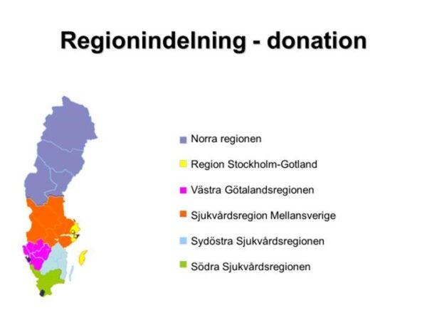 Regionindelning
